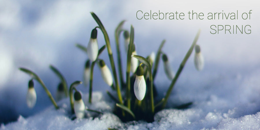 Celebrate the arrival of SPRING
