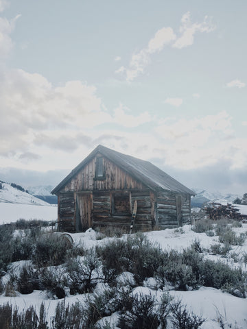 A Cabin in Idaho