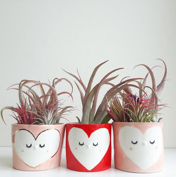 Red heart ceramic planter