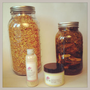 Ingredient Spotlight: Organic Dried Calendula