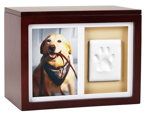 Memory Box with Pawprint