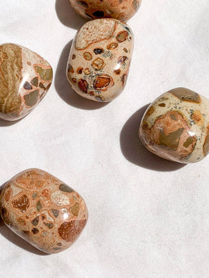 Rhyolite Tumbles | Medium - Unearthed Crystals