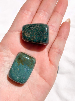 Bloodstone Tumbles | Large - Unearthed Crystals