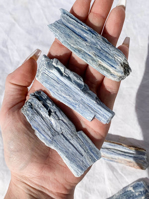 Kyanite Blade Rough |  Large - Unearthed Crystals