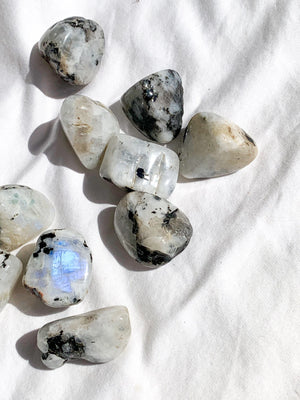 Rainbow Moonstone Tumbles | Medium - Unearthed Crystals