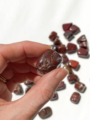 Brecciated Jasper Partially Tumbled | Small - Unearthed Crystals