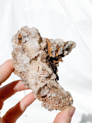 Pseudomorph Calcite after Goethite (Hydrated Iron Oxide) Specimen - Unearthed Crystals