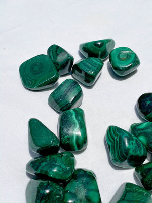Malachite Tumble | Small - Unearthed Crystals