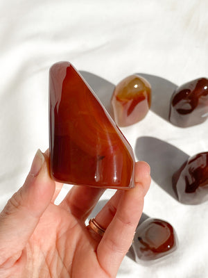 Carnelian Standing Freeform  | Small - Unearthed Crystals