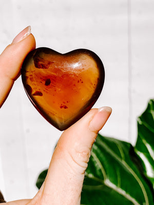 Amber Heart | Large - Unearthed Crystals