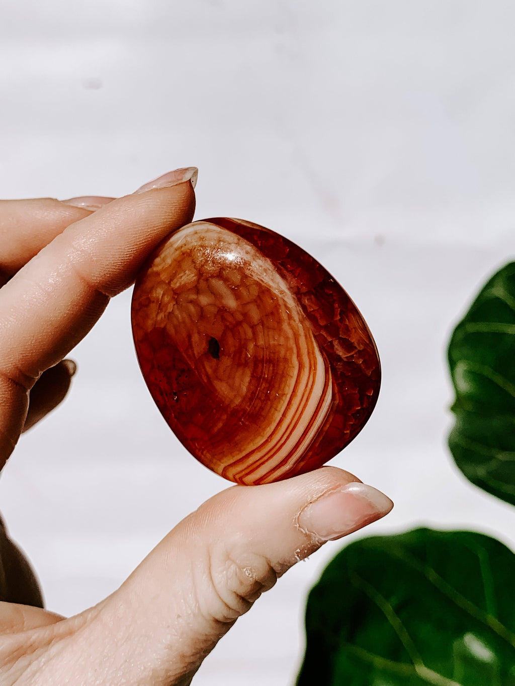 Carnelian (Snakeskin) Worry Stone | Large - Unearthed Crystals