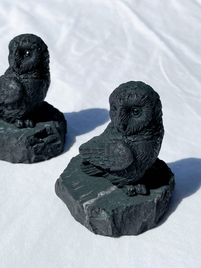 "Shungite Carving ""Ookie""  The Baby Owl - Unearthed Crystals"