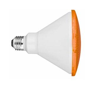 Orange LED Flood Light