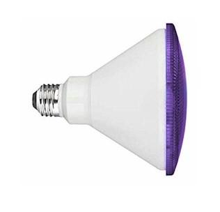 Purple LED Flood Light