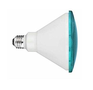 Teal LED Flood Light