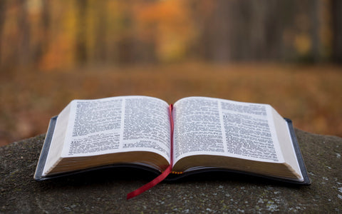 Which is more important, reading a minimum number of pages in the scriptures each day or pondering what you read?