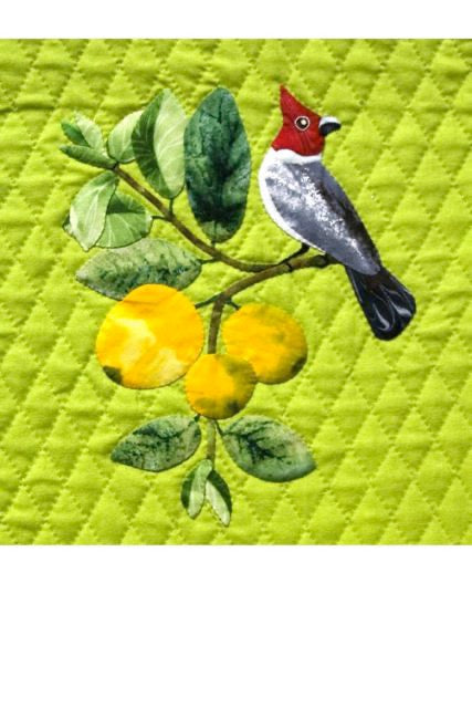 Mango and Java Sparrow Pattern by Sylvia Pippen