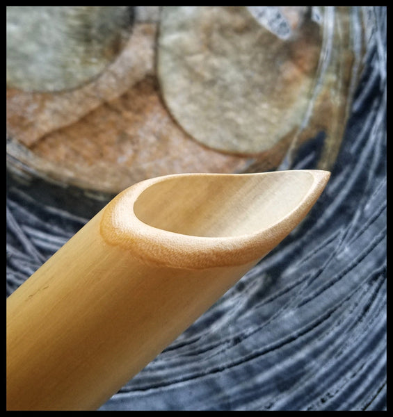Handmade Ceramic | Incising Tool Bamboo Handle With Pointed Head - Elizabeth Schowachert Art