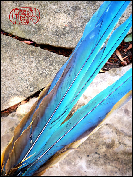 Handmade Parrot Feather Paint Brush - Elizabeth Schowachert Art