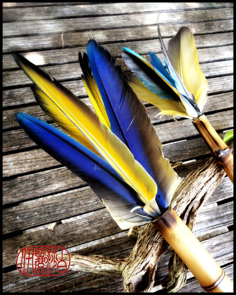 Handmade Parrot Feather Paint Brushes - Elizabeth Schowachert Art