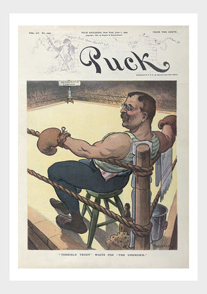 Teddy Roosevelt Boxing Political Cartoon Digital Download