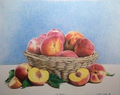 Colored Pencil : Still Life