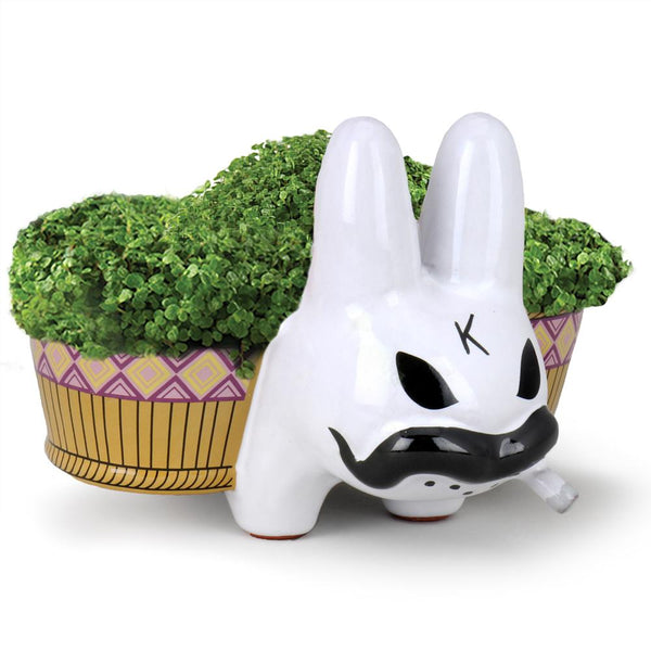 Chia Pet Labbit By Frank Kozik