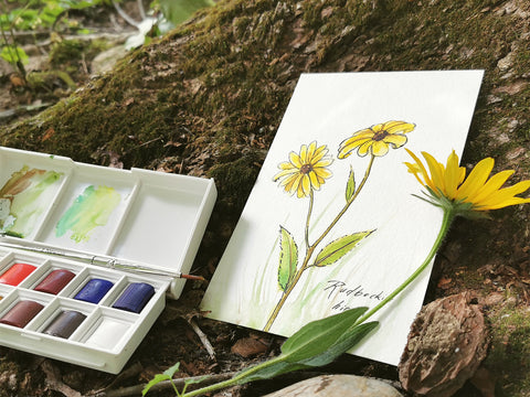 Photo of a watercolor painting of a Rudbeckia hirta flower, leaning against a mossy tree