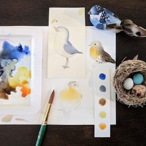 Fun with Watercolor: Birds | Family