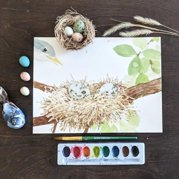 Fun with Watercolor: Eggs and Nests | Family