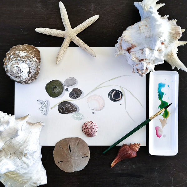 Fun with Watercolor: Seashells, Rocks and Pebbles | Family