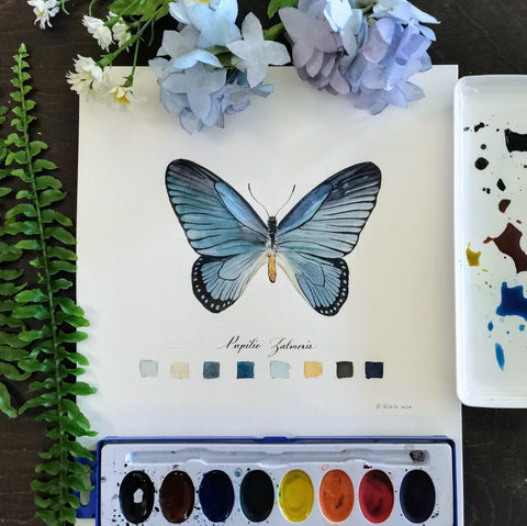 Fun with Watercolor: Butterflies | All Ages