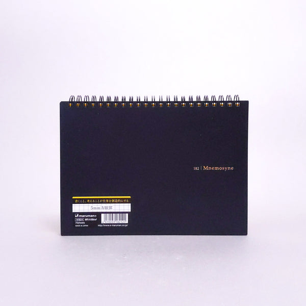 Mnemosyne Graph Notebook