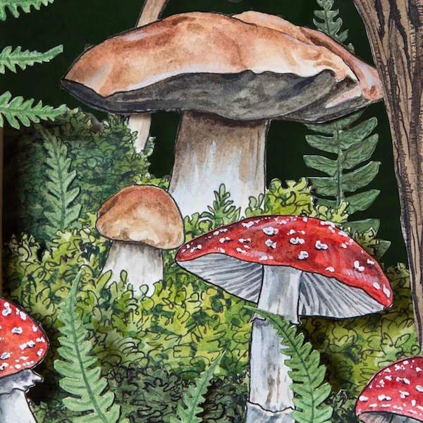 Watercolor Paint Night: Mushrooms | Teens and Adults