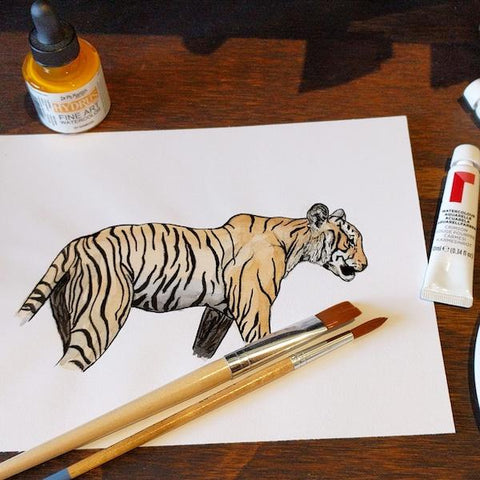 Draw and Paint Animals | Adults