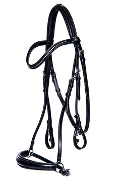 Bridle Hereford