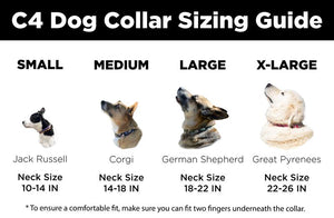C4 Dog Collar (Horse Heads)