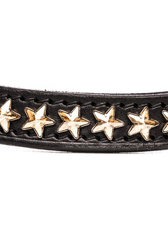 BROWBAND FAMOUS STAR CRYSTAL GOLD