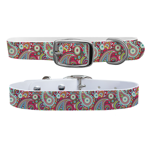 C4 Dog Collar (Magenta Paisley)