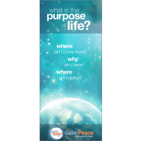 what is the purpose of life? - Brochures (100)