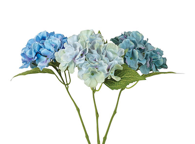 Rochelle Hydrangea Single stem assorted