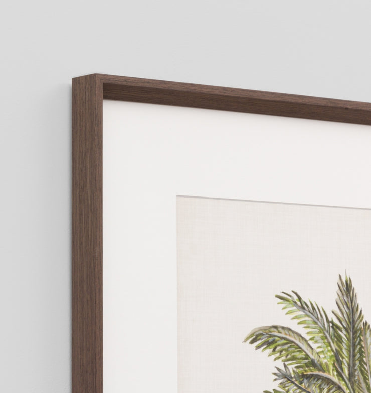 British palm 1 framed print
