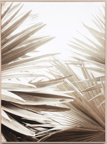 NATURAL PALM 1 F/CANVAS- 75X100