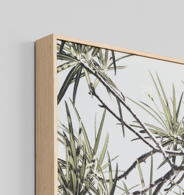 Shaded Paradise canvas print