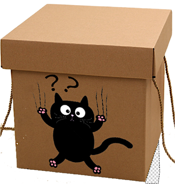Curious Cat Mystery Gift Box