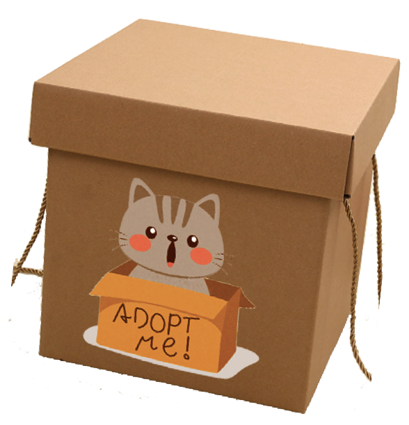 """Adopt me"" Gift Boxes"