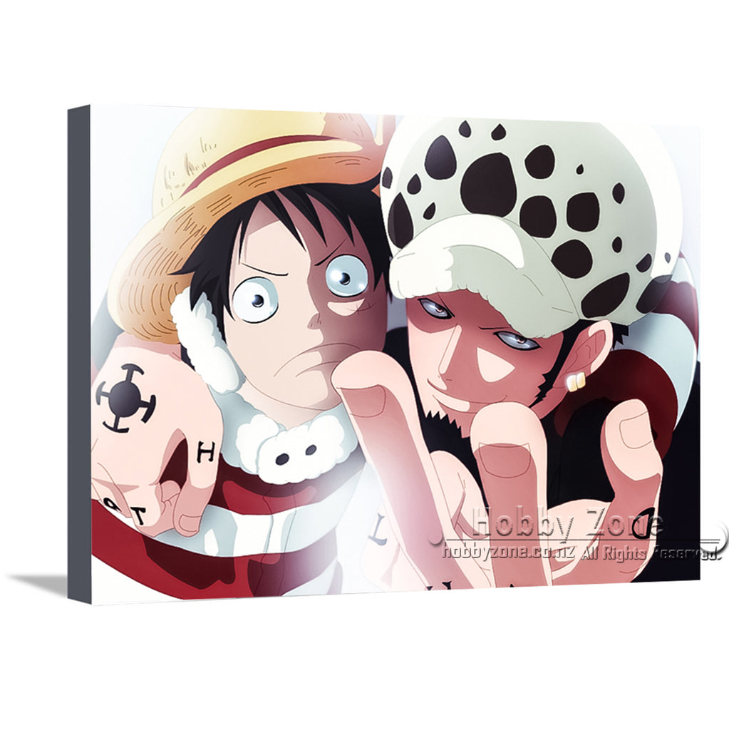 One Piece Canvas Collection