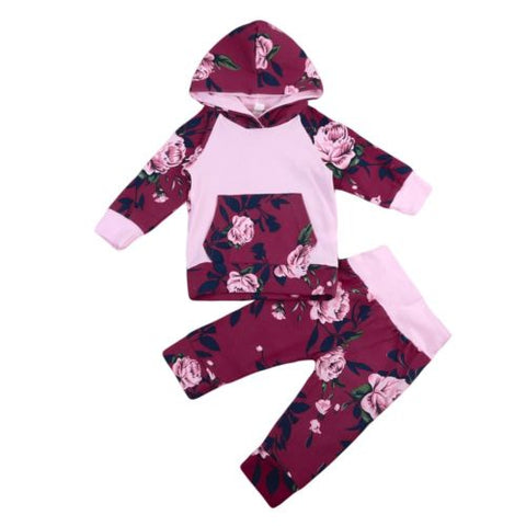 2pcs Infant Kids Baby Girl Tops Hoodie T-shirt+Floral Pants Outfit Clothes Set Size 0-12M