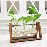 Adeeing Creative Plant Glass Hydroponic Container Terrarium Desk Decor with Wood Stand Flower Pot Home Decoration - thefashionique