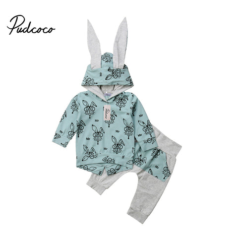 Autumn Winter Floral Rabbit Ear Hooded Baby Boy Girl Clothes Set Long Sleeve Cotton Sweatshirt Top+Pants Baby Clothing Christmas